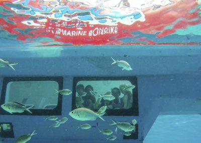 Semisubmarine underwater