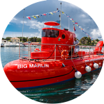 semisubmarine in Krk, Croatia by Agena Marin